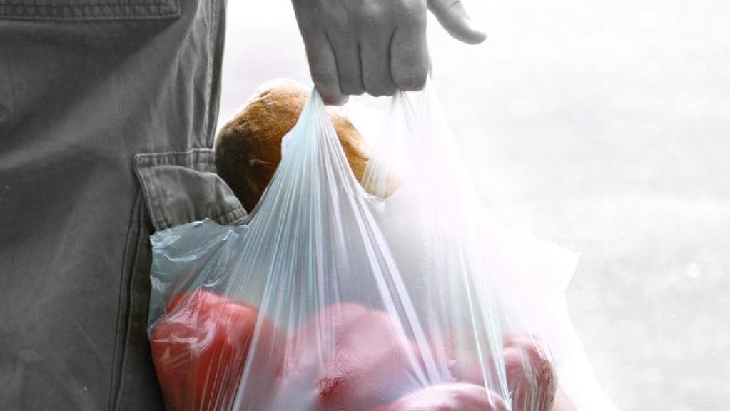 Plastic bag with grocery items